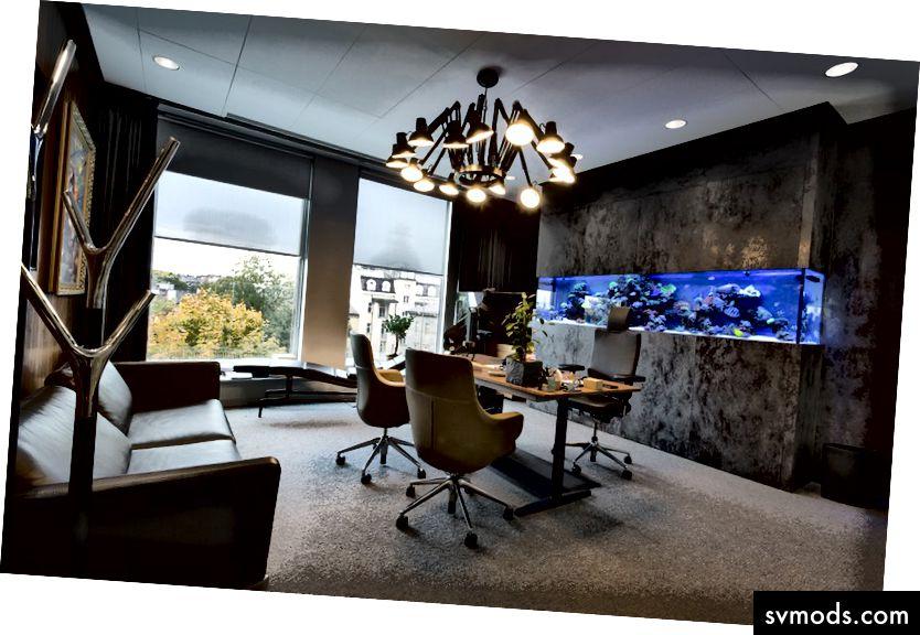 Mein schickes Büro im Codewise-Hauptquartier - wir werden es durch mehr Arbeitsplätze ersetzen