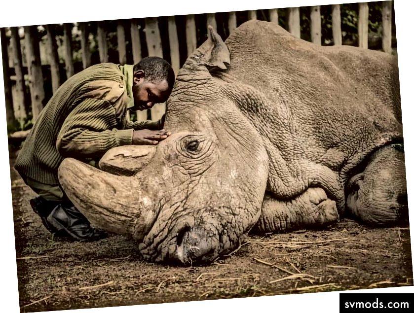 Ami Vitale per National Geographic Creative