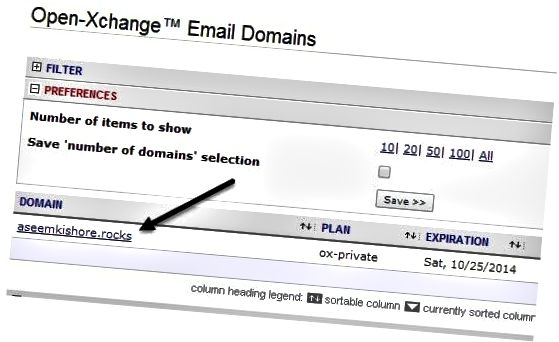 domain email