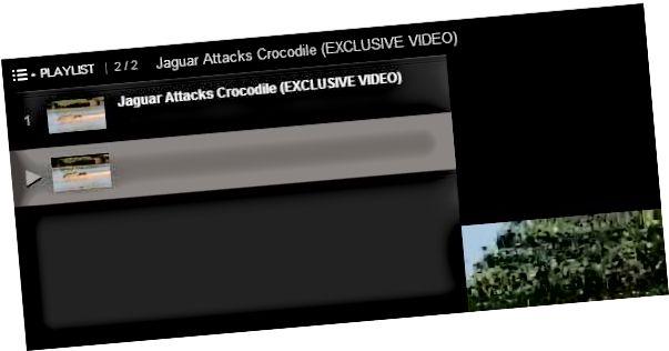 youtube daftar putar url