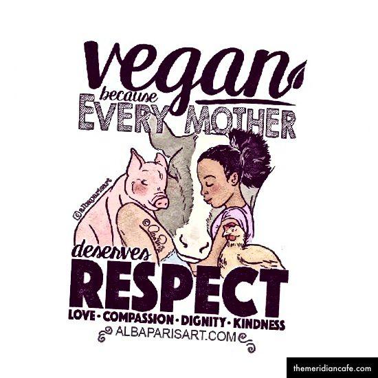 Veganismus ist eine radikale Bewusstseinsveränderung