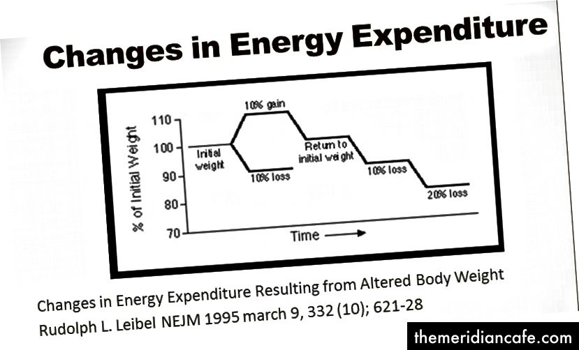 Zmiany w wydatkach energetycznych wynikające ze zmiany masy ciała Rudolph L. Leibel NEJM 1995 marca 9, 332 (10); 621–28