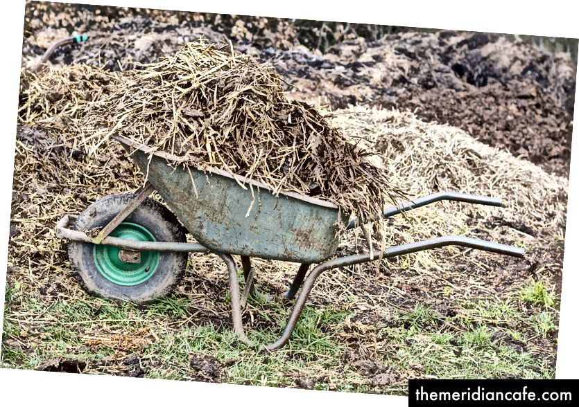 Mit Gras gefüttertes Rindfleisch ist ein schlecht definierter, weitgehend unregulierter Begriff, der sich auf eine Ernährung bezieht, die einige Körner und künstliche Gräser enthält und die natürlichen Grasflächen, die zur Fütterung von Weidevieh verwendet werden, mit hohen Kosten belastet.