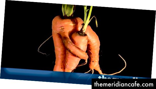 As cenouras estão sendo retiradas das prateleiras em todo o país porque se suspeita que o vegetal laranja tenha contato sexual indesejado. (Crédito: theguardian.com)