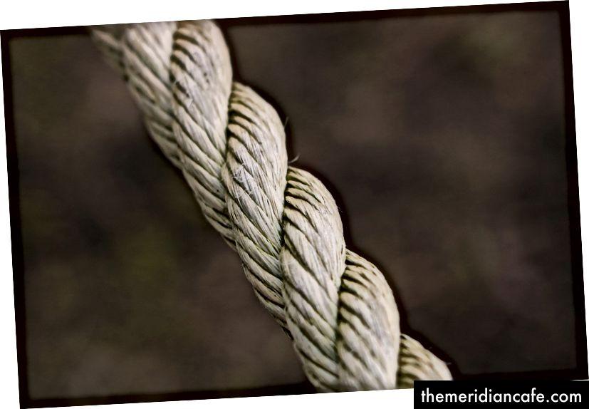 """""""Un coup de macro de deux bouts de corde liés"""" par Gwen Weustink sur Unsplash"""