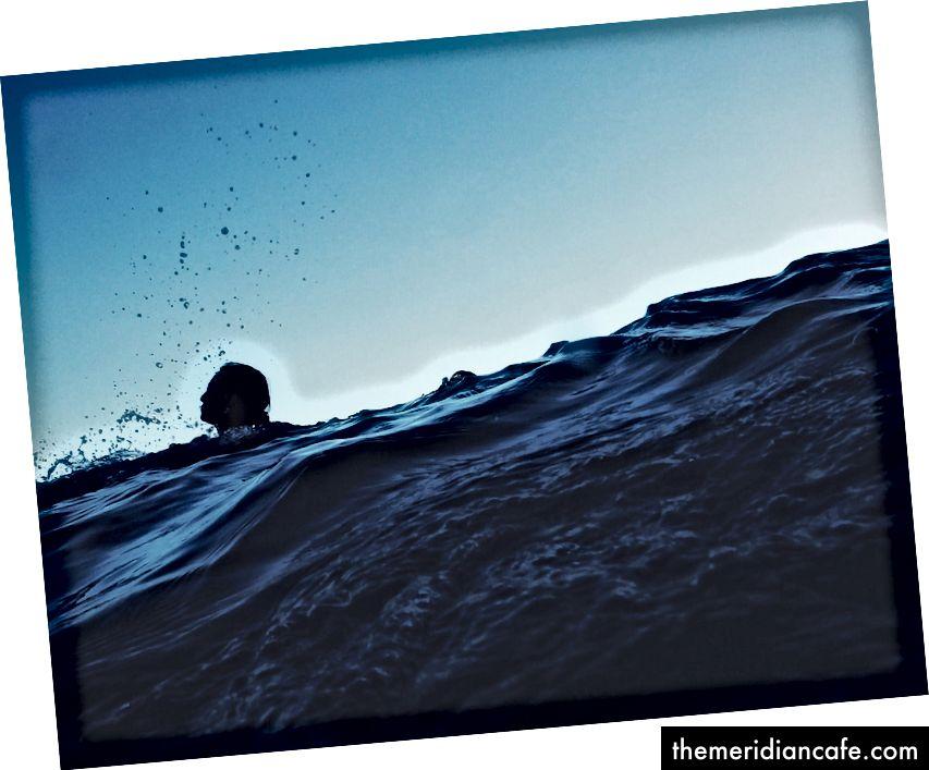 الصورة لي يانغ على Unsplash