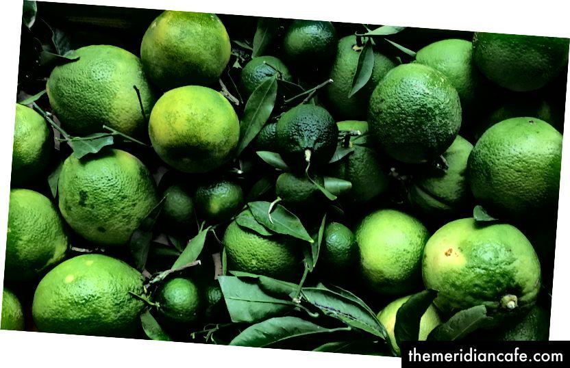 Zeleni agrumi puni se esencijalnim uljima koja propadaju kako plod sazrijeva