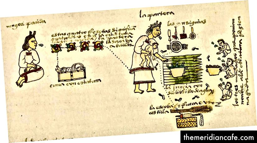 Die Hebamme oder Tlamatlquiticitl kümmerte sich um den Komfort, die Unterstützung, die Hygiene und die Spiritualität der Mutter und des Neugeborenen, einschließlich des ersten Bades des Babys, das Amaranth-Mendoza Codex aus dem 16. Jahrhundert enthielt
