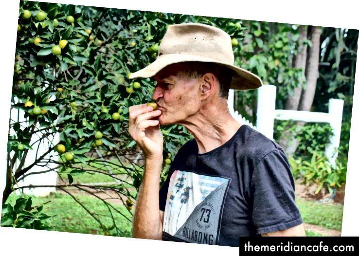 Duncan McNaught come um kumquat ao lado da estrada. Foto: Harriet Tatham