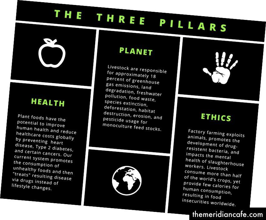 Die drei Säulen: Gesundheit, Planet & Ethik