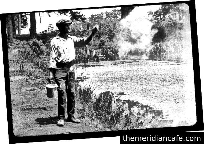 Filme de filmes sobre malária. Crédito aqui
