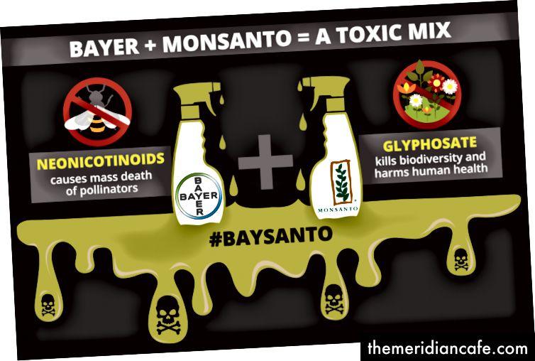 Image: Observatoire européen des entreprises, la fusion entre Bayer et Monsanto a été décrite comme un «mariage en enfer» par les militants