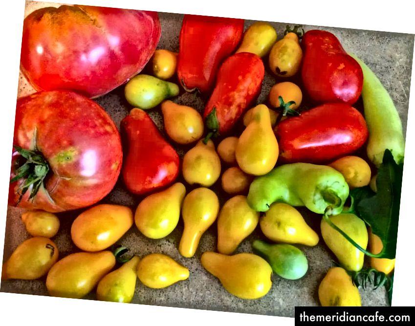 Ich liebe Gemüse so sehr, dass ich dumme Fotos von denen mache, die ich angebaut habe, als wären sie meine eigenen Babys.