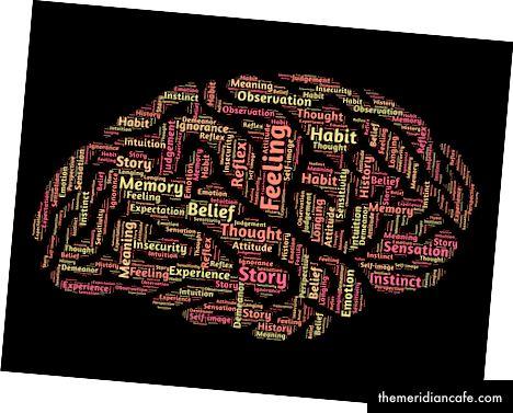 Mind Brain Mindset de Pixabay