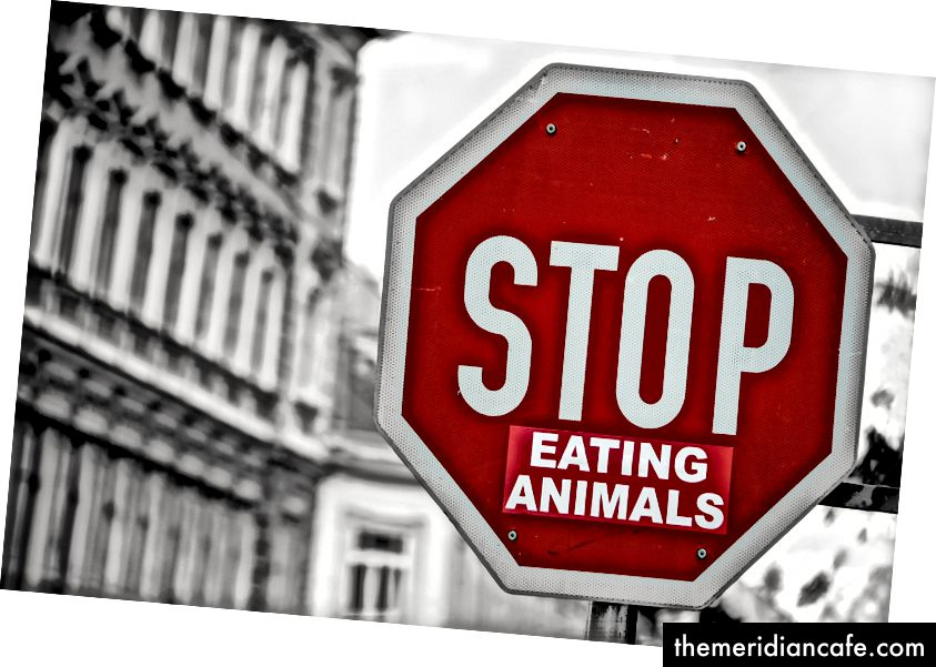 """Pare de comer animais"" Foto de Simon Matzinger no Unsplash"