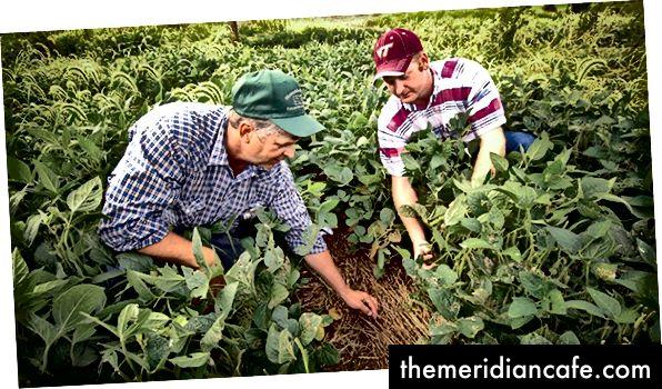 Οι αγρότες στη Βιρτζίνια χρησιμοποιούν πρακτικές απαγόρευσης για την προστασία των οικοτόπων και της ποιότητας των υδάτων στην υδροβιότητα του Chesapeake Bay. Φωτογραφία ευγενική προσφορά του USDA, από το Flickr, άδεια με CC BY 2.0