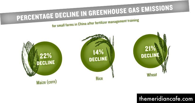 Οι μικρές γεωργικές εκμεταλλεύσεις στην Κίνα παρήγαγαν λιγότερες εκπομπές αερίων θερμοκηπίου αφού οι αγρότες συμμετείχαν σε προγράμματα κατάρτισης που επικεντρώνονταν στη διαχείριση των λιπασμάτων. Προσαρμοσμένη από τον Cui, Ζ., Et αϊ. Φύση http://dx.doi.org/10.1038/nature25785 (2018)