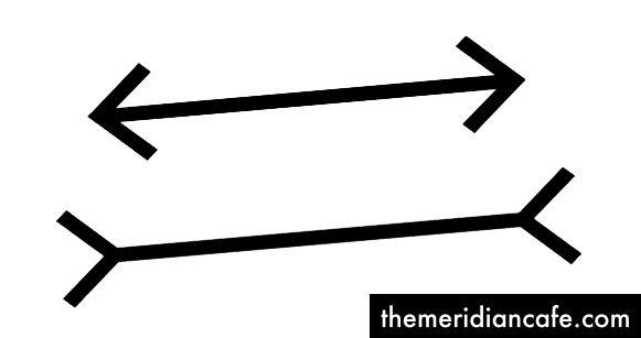 الائتمان - The-Mueller-Lyer-Illusion