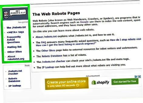 Robots.txt bilan