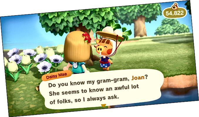 Animal Crossing New Horizons, Margarida Mae