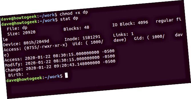 端末ウィンドウの「chmod + x dp」および「stat dp」コマンド。