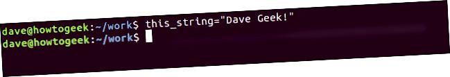 端末ウィンドウでの「this_string = 'Dave Geek!'」コマンド。