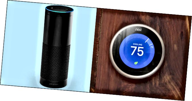 Un Amazon Echo al costat d'un Google Nest
