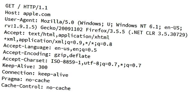 how-do-web-servers-know-if-you-are-using-direct-ip-address-access-or-not-01