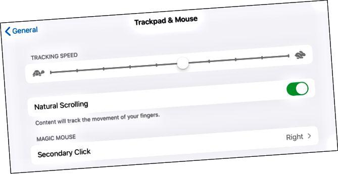 Προσαρμογή ποντικιού στο iPadOS