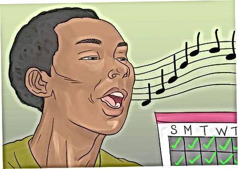 Ushtrimi i Zërit tuaj