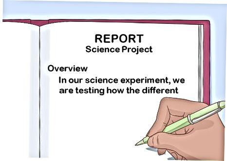 Oprettelse af din rapport
