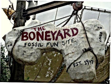 Dinoland USA