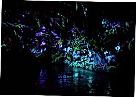 Pandora - Avatar af verden