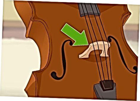 Celloning jismoniy xususiyatlarini baholash