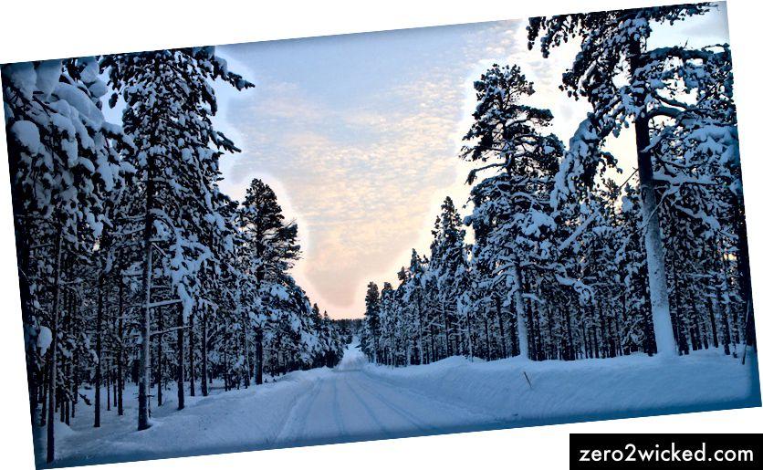 Finska zimska pokrajina | © Jeimo / dobre brezplačne fotografije