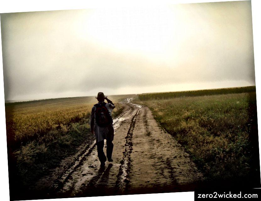 """""""Person går alene på en landlig sti gennem landskabet"""" af David Marcu på Unsplash"""