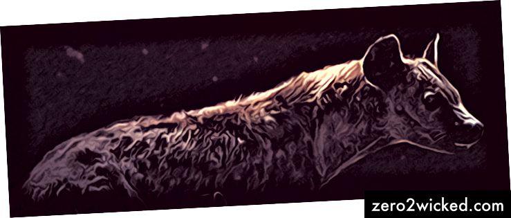 Är det konstigt att denna hyena var med på baksidan av min första roman, Be Silent?